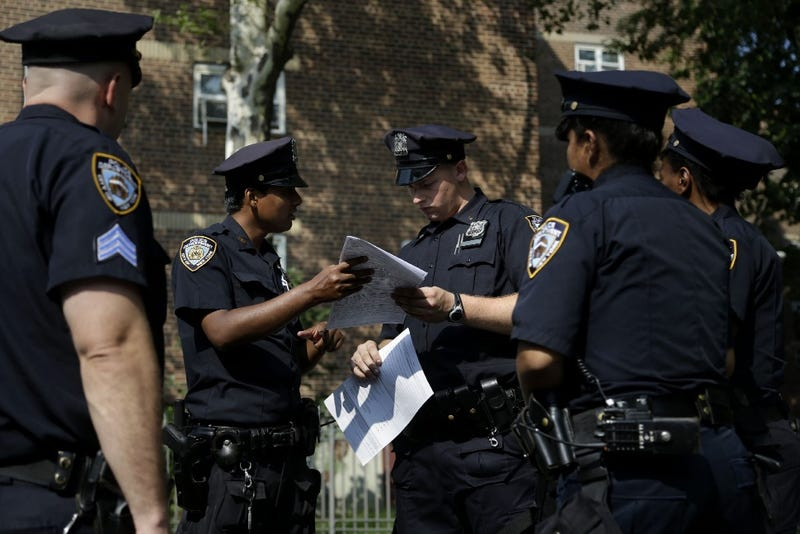 Court Blocks Stop-and-Frisk Changes