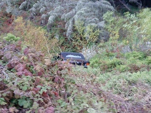 A Ditch Filled With Poison Oak Is No Place For A Honda S2000