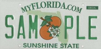 Florida to Adopt CARB Standards?