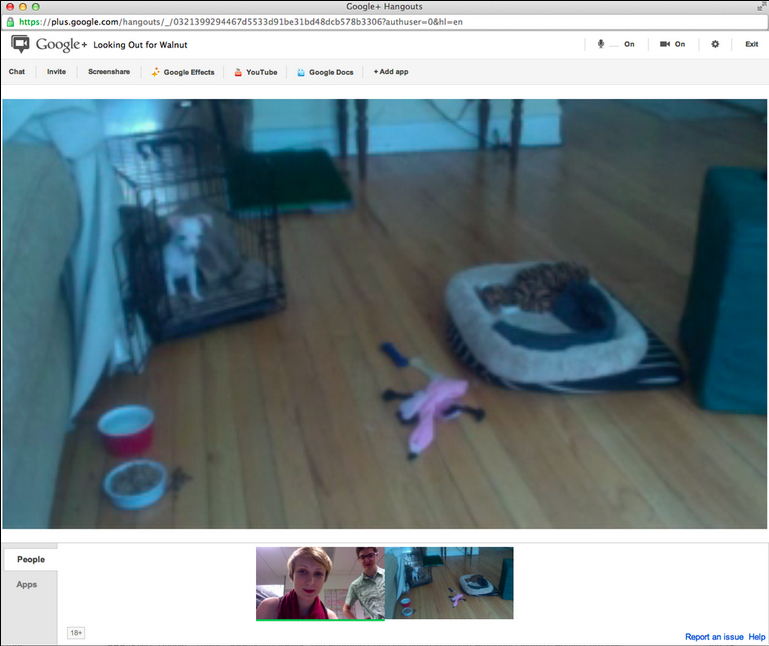 Use Google+ Hang Outs to Create Your Own Personal Puppy Cam