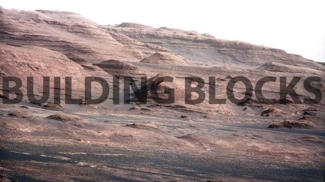 NASA Is Engineering Space Bugs To Produce Bricks on Mars