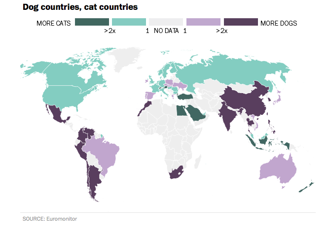World Map Reveals How Countries Are Divided Between Cat And Dog Lovers