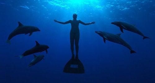 Documentary Deploys Spy Tech to Trump Japanese Dolphin Killers