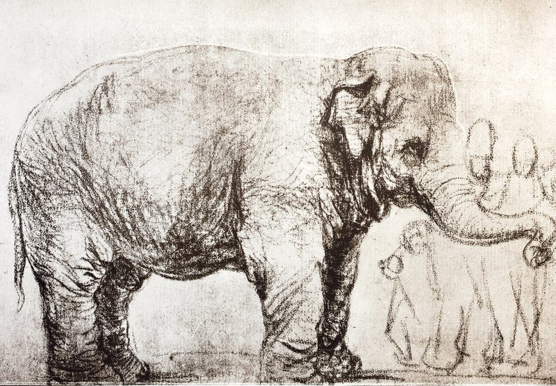 This Rembrandt depicts the first Asian elephant described by science!