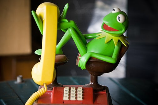Kermit the Phone Unconcerned by Extinction