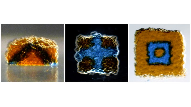 Scientists Can Print Synthetic Tissue Using Just Water and Oil
