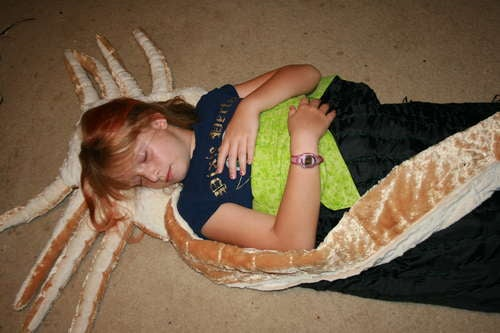 Make your own Alien facehugger pillow