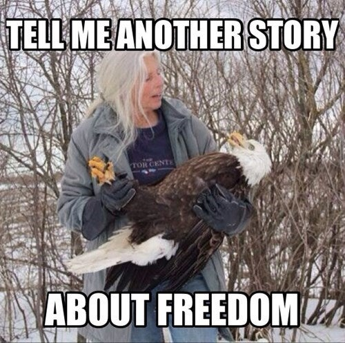Time for some FREEDOM