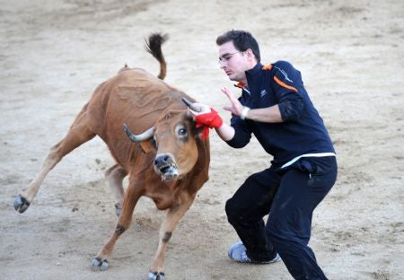 Bullfighting, Minus The Blood Or Swishy Uniforms