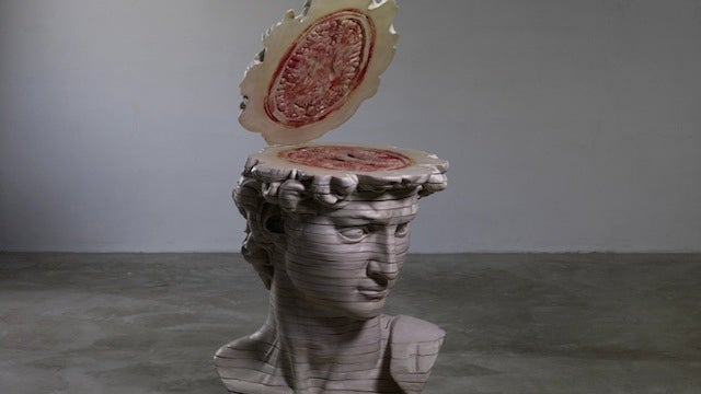Explore the internal anatomy of the David's head slice by meaty slice