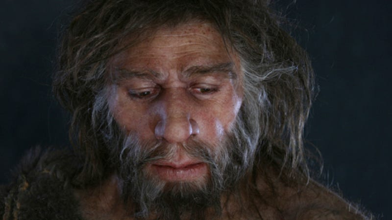 Admit it - you totally would have had sex with Neandertals