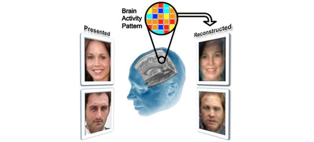 Scientists Can Reconstruct Faces by Reading Your Mind