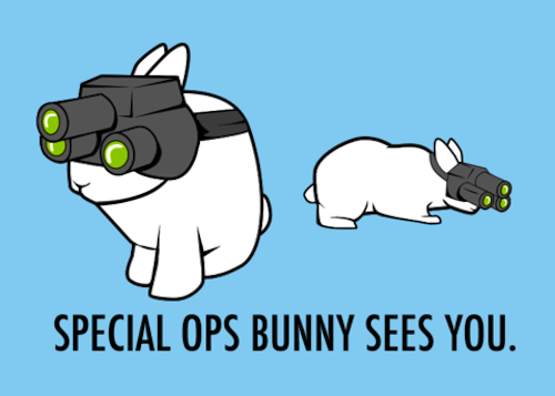 Special Ops Bunnies Are Watching You