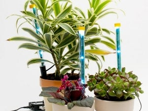 Build Your Own Plant-Boosting LED Light Spikes