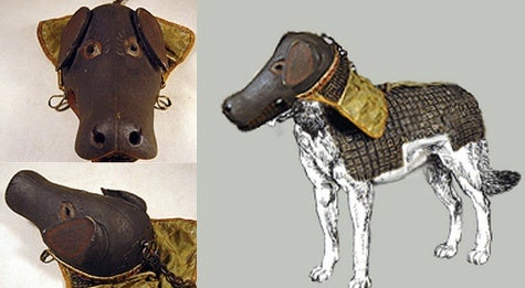 And now, historical samurai armor built for a dog