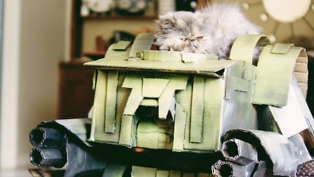 Cardboard Mecha Kitty commands you to put down the catnip. Slowly.