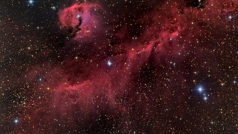 The Seagull Nebula spreads its wings across 100 light-years