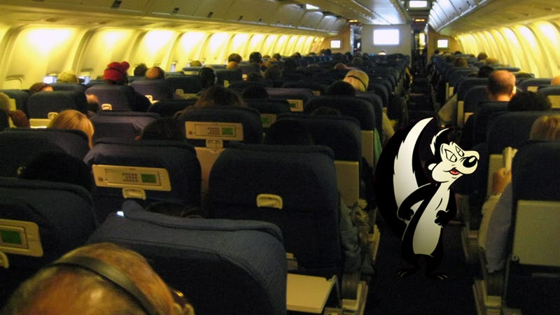 Top 5 Smelly Things That Should Be Banned In Airplanes