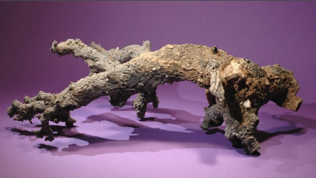 How we know that this is a piece of fossilized lightning