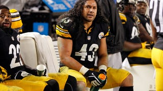 The Steelers Really, Really Hope Troy Polamalu Retires
