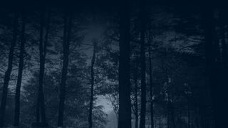 The Graveyard Shift: Go Innawoods Edition