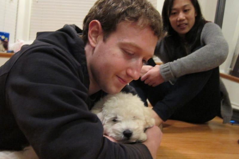 Come Friend Mark Zuckerberg's Cute New Dog