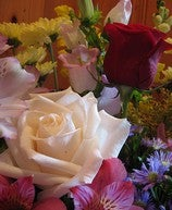 How to Extend the Life of Fresh Cut Flowers