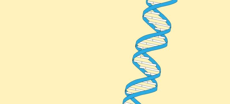 Microsoft Is Storing Data on 10 Million Strands of DNA