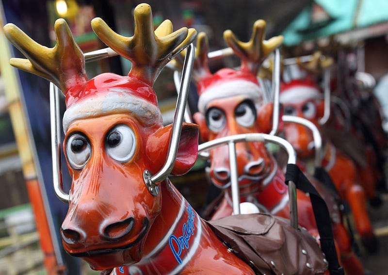 Reindeer Shroom to Escape Winter Boredom