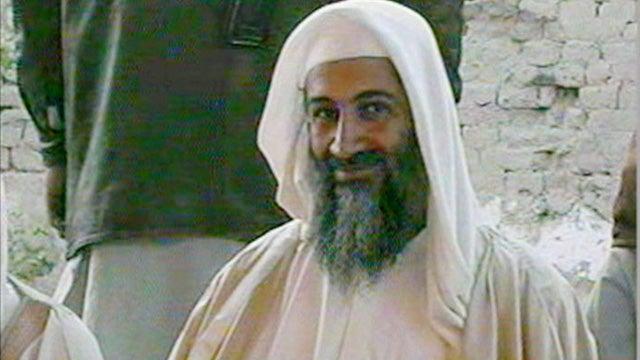 Osama Bin Laden Kept 'Natural Viagra' and other Bin Laden News