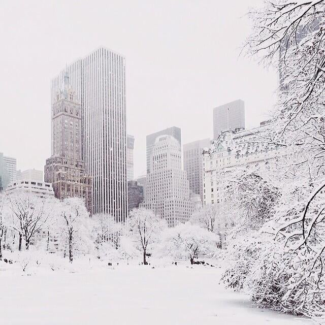 New York looks gorgeous in the snow—for five minutes, in Central Park