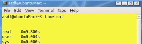 Turn the terminal into a stopwatch with time cat