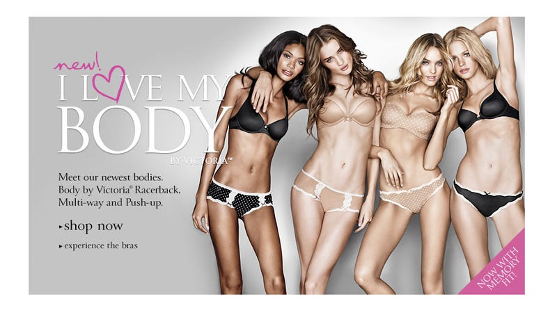 Victoria's Secret Nixes Mastectomy Bra Because 'It's Complicated'