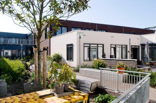 Esta villa holandesa está diseñada al completo para gente con demencia