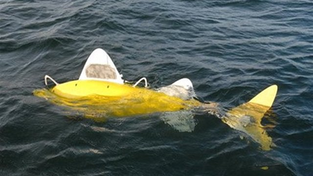 Autonomous Pollution-Hunting Robot Fish Introduced into Their (Un)natural Habitat