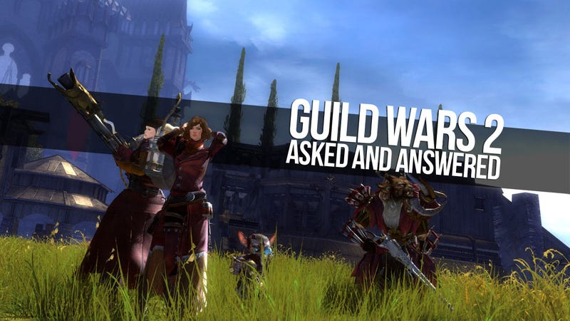 Everything You Wanted to Know About Guild Wars 2