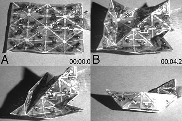 Watch Self-Folding Origami Take All the Fun Out of Tiny Paper Boats