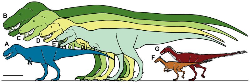 Pygmy Tyrannosaurs once ruled the Arctic reaches of Alaska