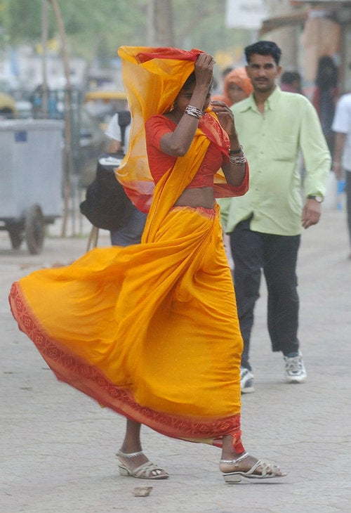 Endangered Species: The Sari