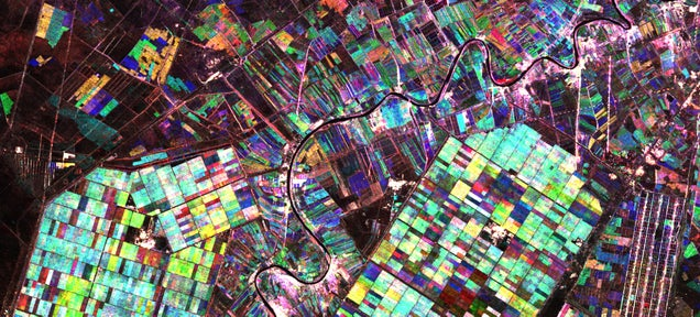 Beautiful Fields of Crops as You've Never Seen Them Before