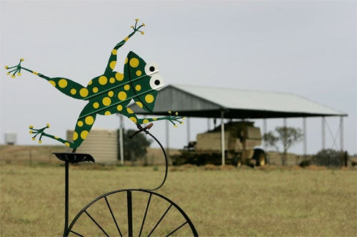 Bicycle Built For Roo