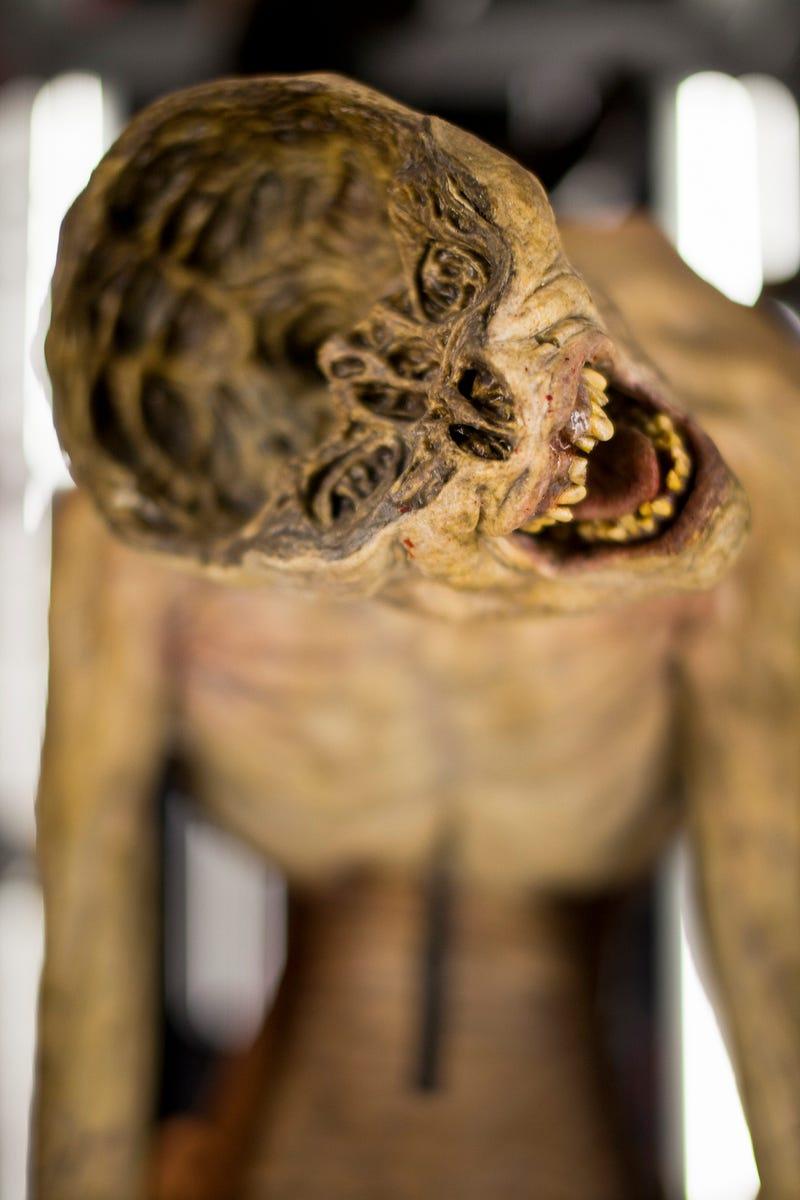 Seattle EMP Museum - Horror, Fantasy, & Sci-Fi Exhibits