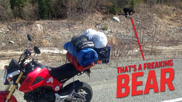 ​This Nutty Bastard Rode A Honda Grom From Portland To Alaska