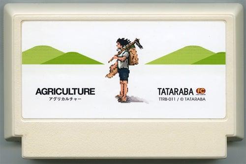 Famicom Carts, Not Games, As Art