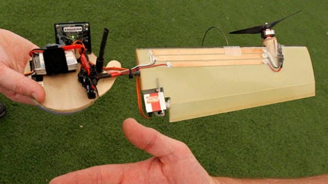 The Boomerang Drone That's Based on a Maple Seed