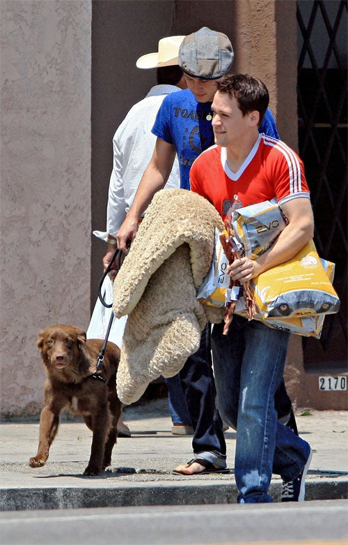T.R. Knight's Dog (Food) Days Of Summer
