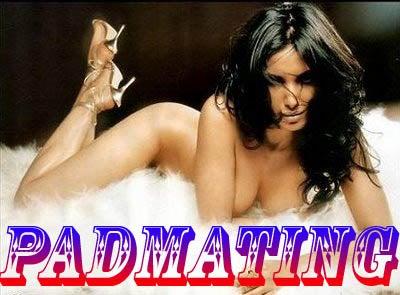 Padmating 2008/9: Potential Husbands Apply