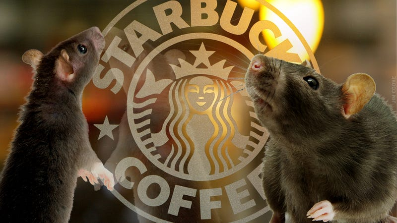 Brian Williams' Coffee Has Poop in It: A Guide to Manhattan's Filthiest Starbuckses