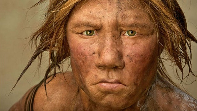 "Wanted: An ""extremely adventurous female human"" to give birth to a Neandertal"
