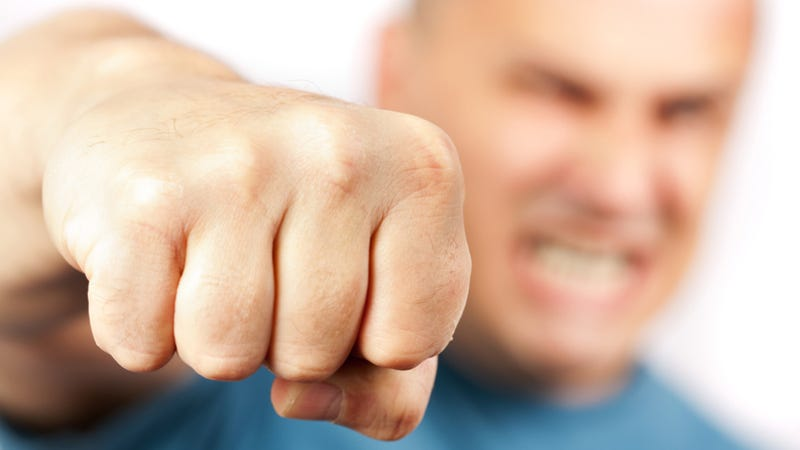 Did fist fighting change the course of human evolution?